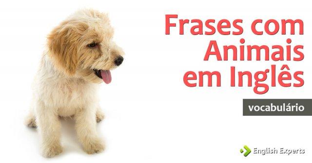 Frases Com Animais Em Inglês English Experts