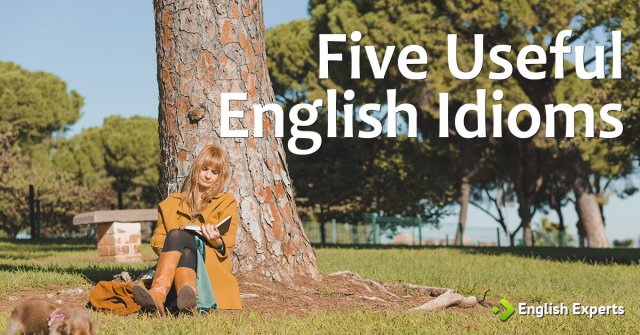 Five Useful English Idioms