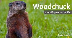 Trava-Línguas em inglês: Woodchuck
