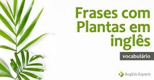 Frases com Plantas em inglês