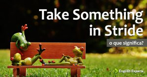 Take Something in Stride: Significado