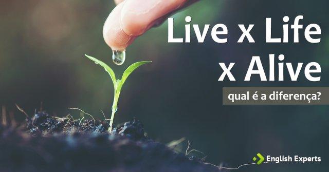 Live x Life x Alive: Qual a Diferença?