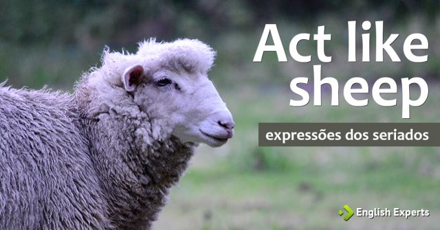 Expressões dos Seriados: Act like sheep