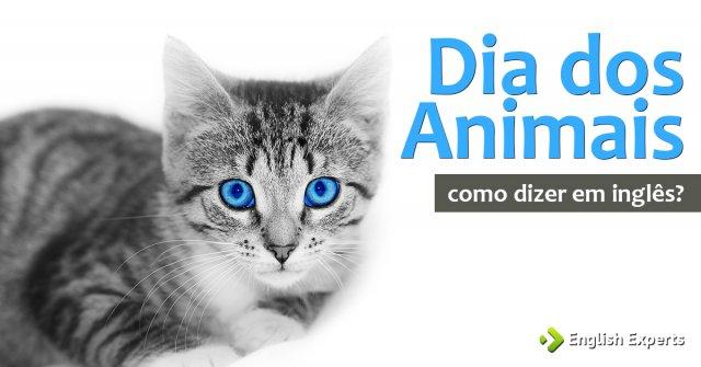 """Como dizer """"Dia dos Animais"""" em inglês"""