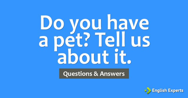 Do you have a pet? Tell us about it.
