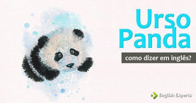 Como dizer ''Urso panda'' em inglês