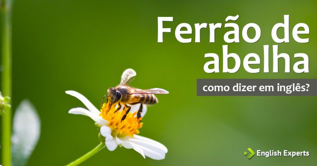 """Como dizer """"ferrão de abelha"""" em inglês"""