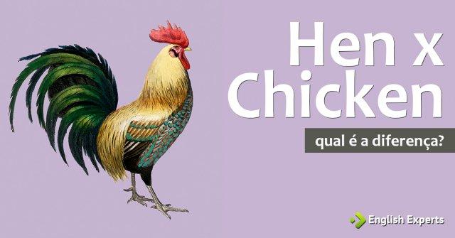 Chicken x Hen: Qual a diferença
