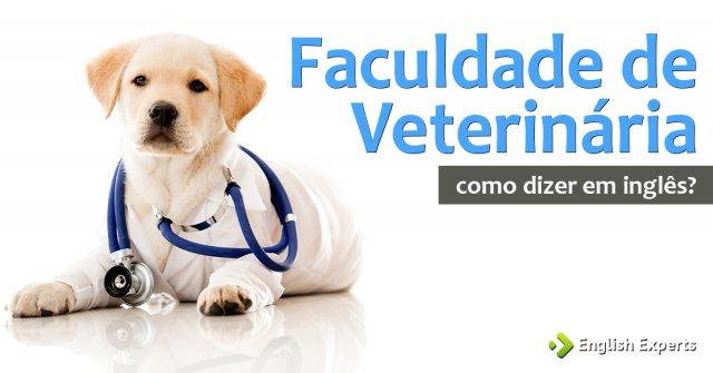 """Como dizer """"Faculdade de Veterinária"""" em inglês"""
